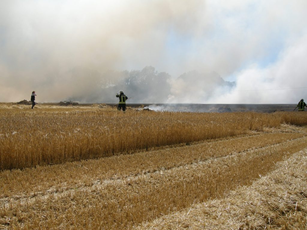 2018-07-02 Soppelfeld brennt in Belm